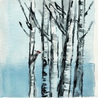 woodpecker_WM