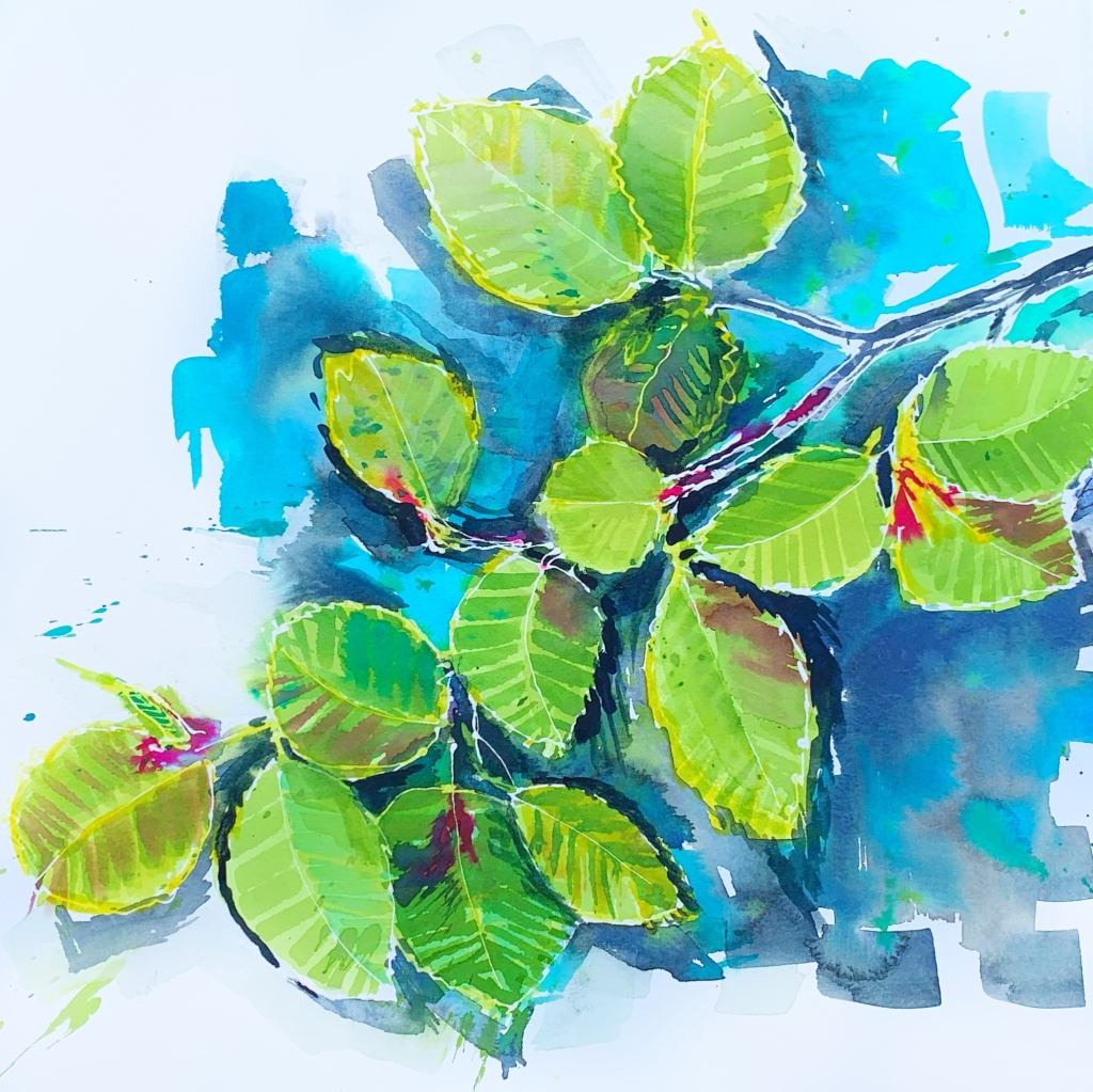 Watercolour painting of alder tree branch with fresh shoots